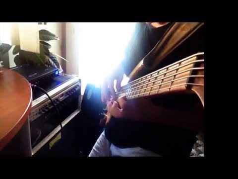 Testing ACG Bass+GK Fusion Head+SCHROEDER Cabinet