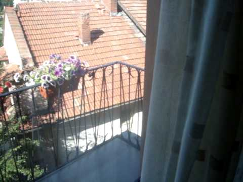 Video of Guesthouse Stambolov