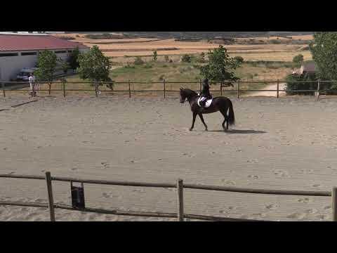Doma Tafalla 290619 Video 1