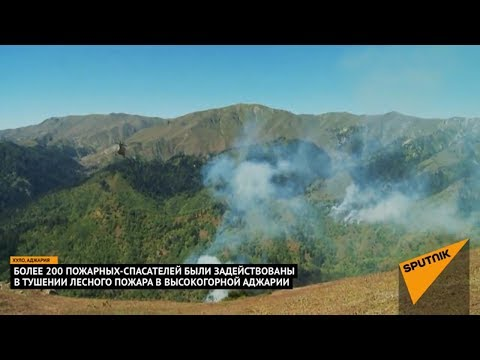 Крупный лесной пожар тушат в Аджарии: кадры с места ЧП в Грузии
