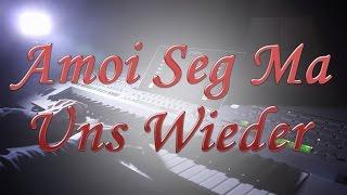Amoi Seg Ma Uns Wieder | Andreas Gabalier | Sing Meinen Song Das Tauschkonzert | Instrumental-Cover