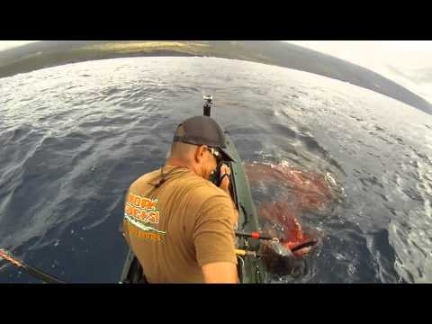 EXTREME KAYAK FISHING HAWAII 66#TUNA  - kayak fishing, kayak photos, kayak videos