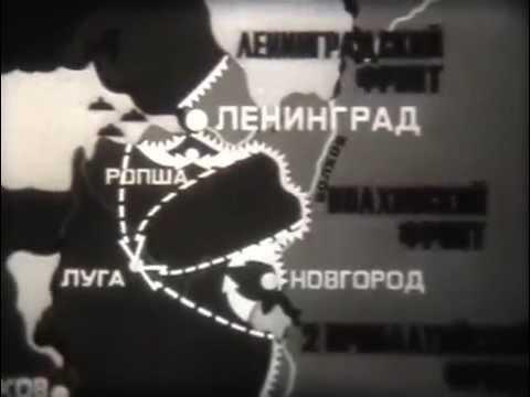 Победа под Ленинградом и Новгородом