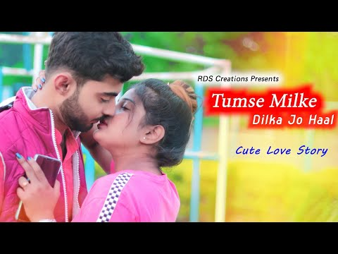 Tumse Milke Dilka Jo Haal | Main Hoon Na | Cute Love Story | Tik Tok Famous Song | RDS CREATIONS