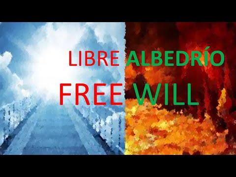 Frases sabias - LIBRE ALBEDRÍO. QUÉ ES EL LIBRE ALBERÍO Y CÓMO EXPLICARLO. Free will
