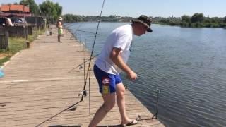 прогноз рыбалки в маяках одесской области беляевского района