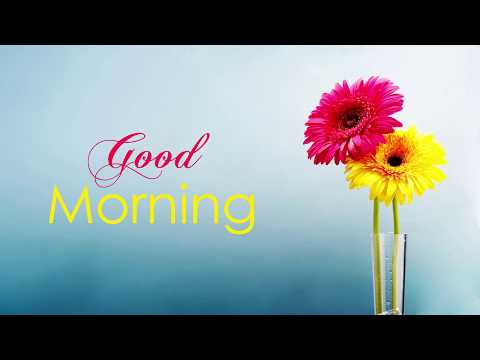 Nice quotes - Good Morning Wishes , greetings , quotes , messages  Good Morning WhatsApp Status Video