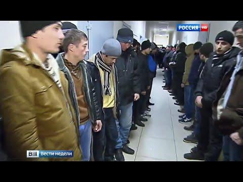 Подмосковье принимает мигрантов по высшему разряду - DomaVideo.Ru