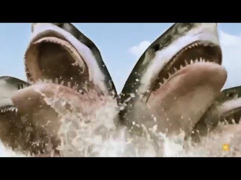 All Creature Effects #8: 5-Headed Shark Attack