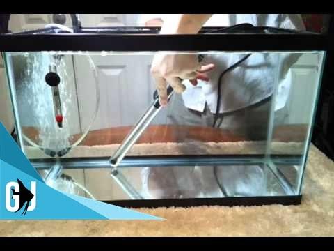 How to Calibrate an Eheim Jager Aquarium Heater