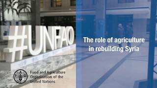 The crucial role of agriculture in rebuilding Syria