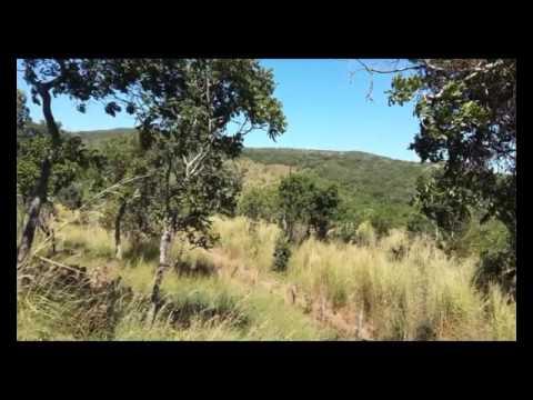 Fazenda em  Jaú Tocantins