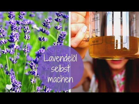 Lavendelöl selbst machen