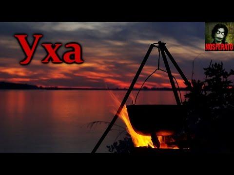 Истории на ночь - Уха (видео)