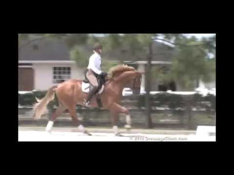 DressageClinic.com Presents Heather Blitz Riding & Lecturing Roanoke  sample 7252012
