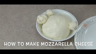 How To Make Mozzarella Cheese At Home Cheekyricho Video Tutorial