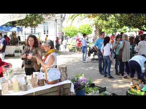 X encontro da rede galega de sementes
