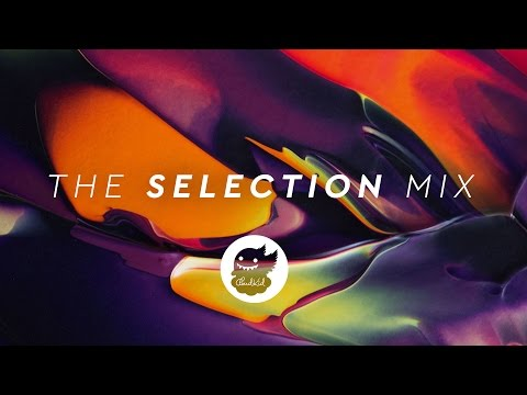The Selection   Best of EDM Mix 2016 (Winter Holiday Mix)