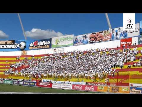 Canticos Alianza vrs Santa Tecla 26-Enero - La Ultra Blanca y Barra Brava 96 - Alianza