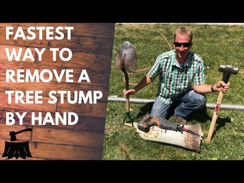 How To Remove A Tree Stump By Hand (In 20 Minutes Or Less)