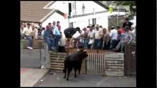 bulls Bulls Demolishing People