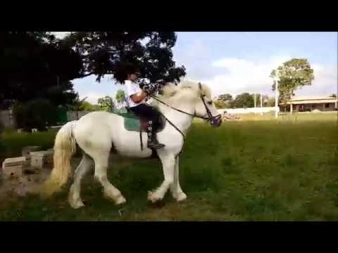 Decima aula de equitação na hipica Nova Canaã