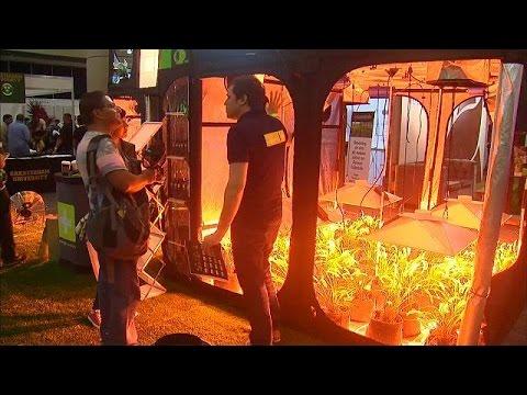 Έκθεση μαριχουάνας στην πόλη του Μεξικού