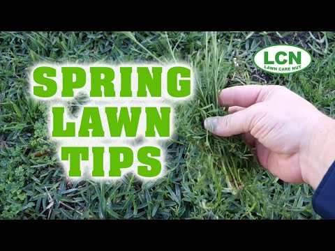 Lawn Care Chemicals: What You Should Know