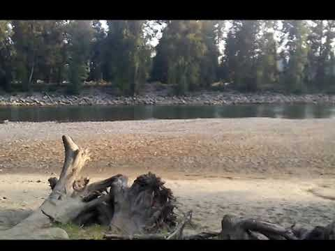 Garrett Ace 300  testing on sand at the  river.