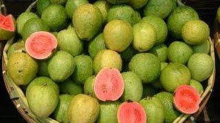 Menurut sejarah, jambu biji adalah tanaman yang ditemukan di Meksiko dan Amerika Tengah. Di Indonesia, jambu biji tumbuh subur, karena Indonesia termasuk ke dalam negara tropis. Buah ini sendiri memiliki banyak sekali khasiat bagi manusiaBaca Selengkapnya : http://tiny.cc/manfaatjambubijiTemukan Wong Sehat Di Sosial MediaWebsite  :  http://bit.ly/wongsehatFacebook :  http://bit.ly/fp-wongsehatTwitter  :  http://bit.ly/twitter-wongsehatGoogle+  :  http://bit.ly/gplus-wongsehat
