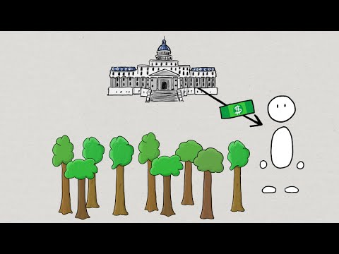 Forestry Economics: Forest Policy