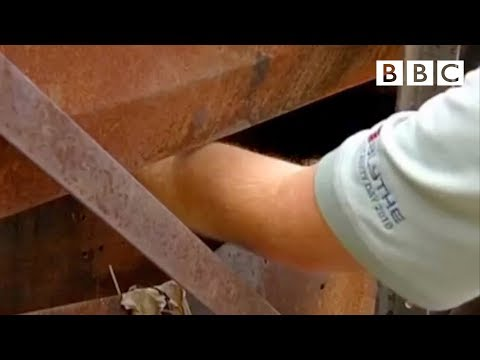 """""""I Cut Off My Own Arm To Save My Life""""   Pleasure and Pain with Michael Mosley - BBC"""