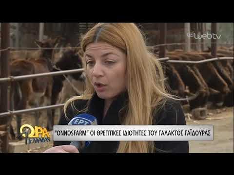 Το γάλα γαϊδούρας… φάρμακο για την υγεία | 28/03/19 | ΕΡΤ