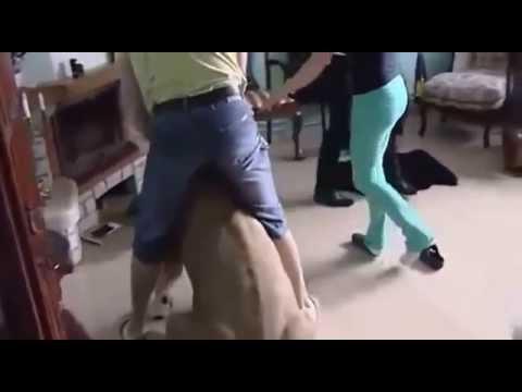 León Ataca a Joven en su propia Casa!