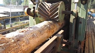 Video Amazing Automatic Wood Sawmill Machines Modern Technology - EXTREME Fast Wood Cutting Machine MP3, 3GP, MP4, WEBM, AVI, FLV April 2019