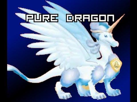 Dragon City - Breed PURE Dragon EASY!!! [5]