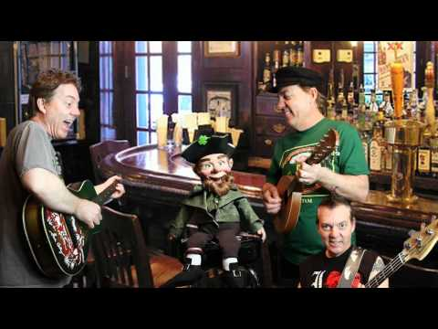 The Leprechaun Song - Brian Haner (Official Video)