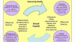 10. Organizational Change: Positive Deviance