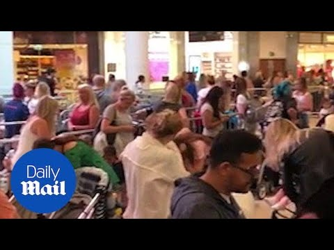 Build-A-Bear offer causes chaos as hundreds try to bag a bargain