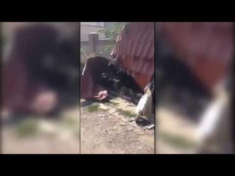 Порно видео в макеевке2
