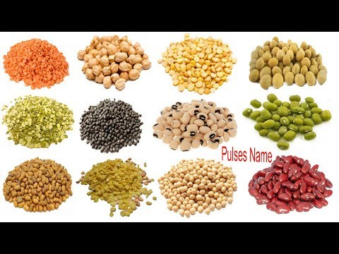 Pulses Name Meaning & Image | ডালের নাম | Necessary Vocabulary Tutorial