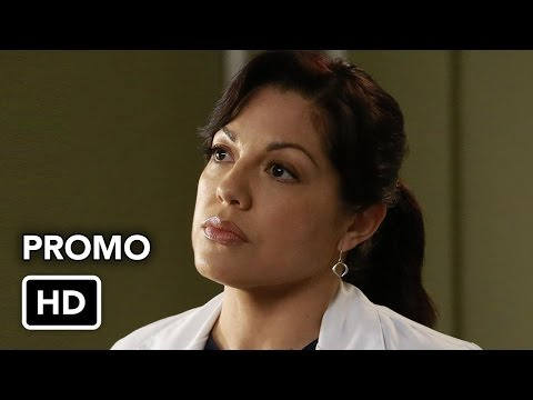 Grey's Anatomy 12.10 (Preview)