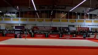 Lanester France  City pictures : Lanester gym Chpts France Equipes 2014