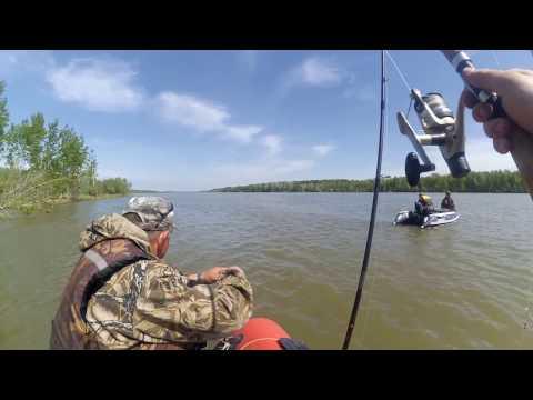 река тым томская область рыбалка видео