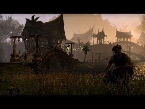 Let's Play Elder Scrolls Online: Holy Crap an Awesome Tiger House!