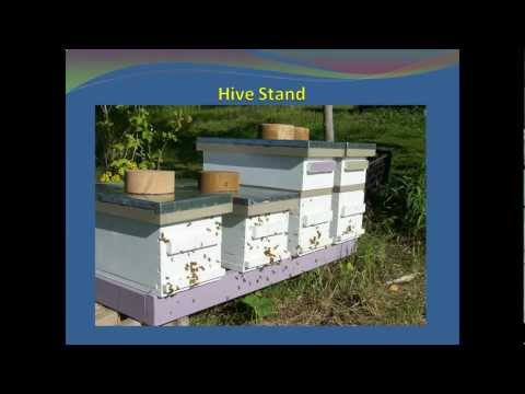 Bee Equipment Essentials – Hive Stand