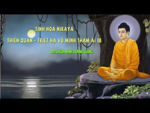 Tinh Hoa NIKAYA - Thiền Quán - Triệt Hạ Vô Minh Tham Ái 1B