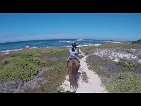 Horseback riding at Pebble Beach, CA