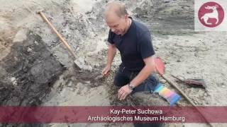 Putzen: #Ausgegraben - Harburger Schloßstraße