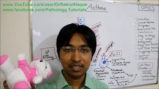 Asthma : Definition, Clinical Features, Pathogenesis, Treatment (HD)
